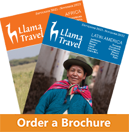 Africa and Latam brochure order button