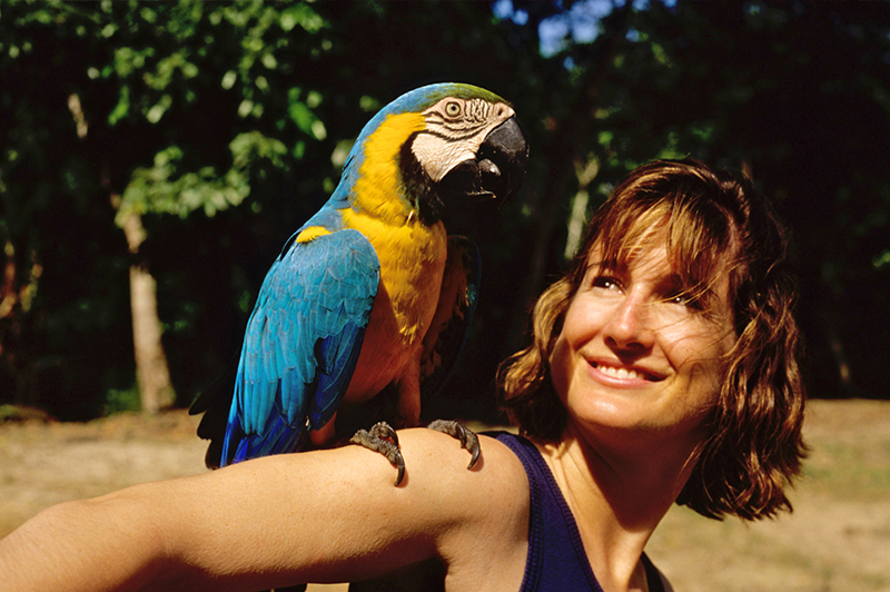 Amazon Peru Llama Travel