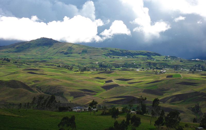 Andean highlands Ecuador Llama Travel