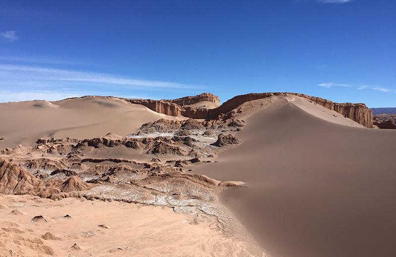 Atacama Desert landscape Chile Llama Travel