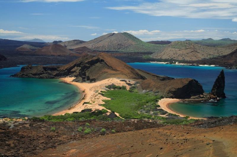 Bartolome Galapagos Llama Travel