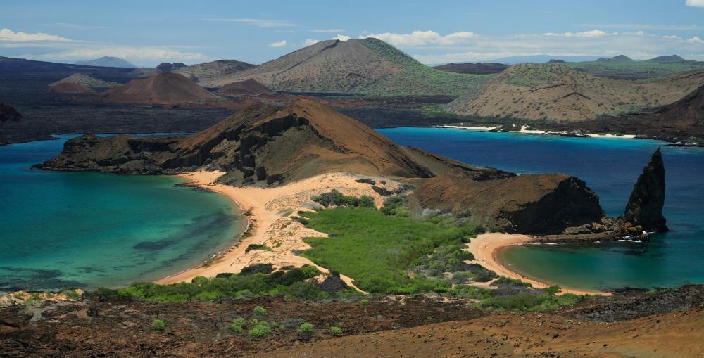 Bartolome Island Galapagos Ecuador Llama Travel