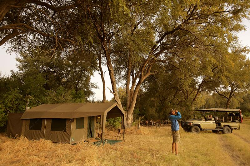 CampTentVehicleGuest