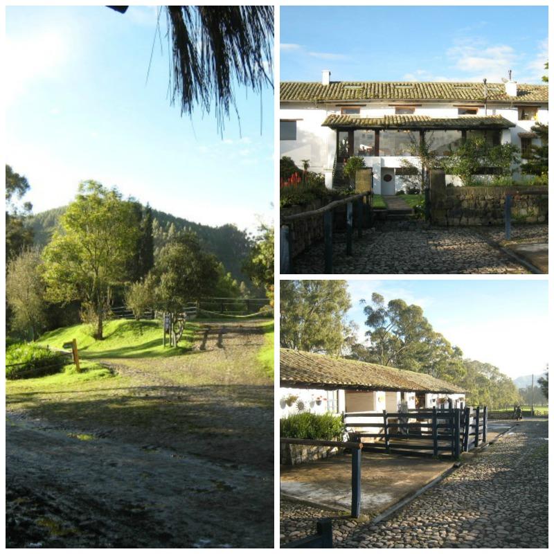 Hacienda Zuleta Llama tRvael property in the morning