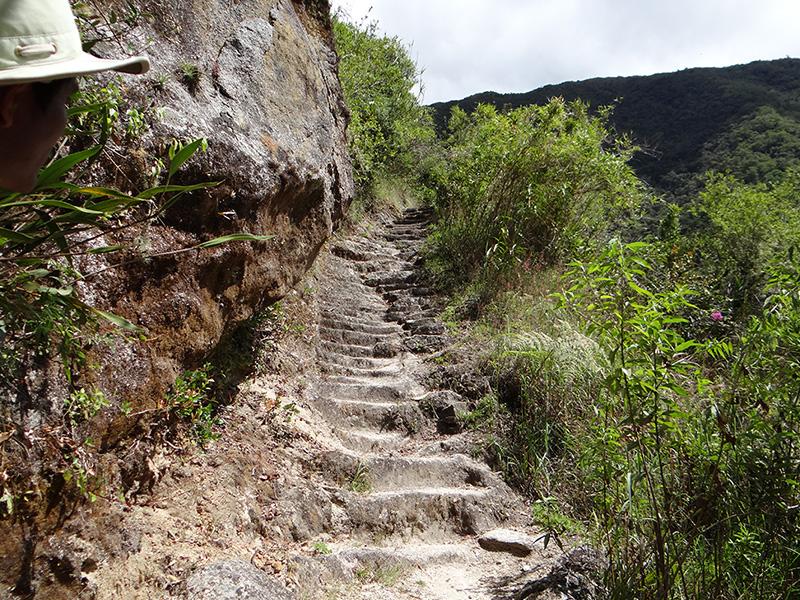 Inca Trail steps 1