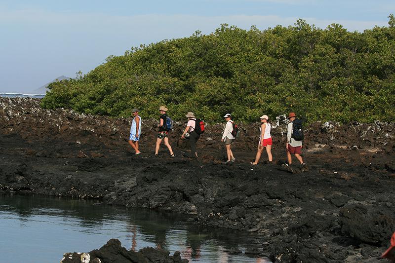 Isabela island 14