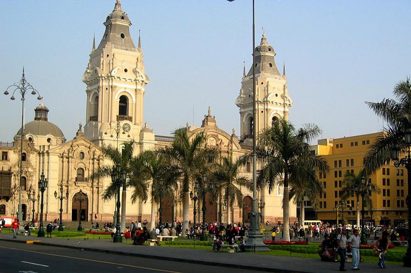 Lima Peru Llama Travel