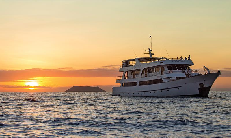 Odyssey Galapagos Llama Travel