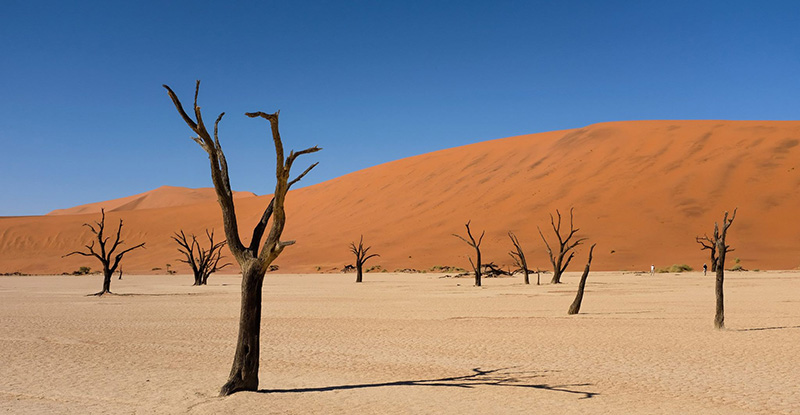 Photo3 Deadvlei Sossusvleu Dunes Namibiajpg
