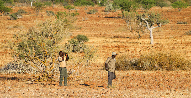 Photo 8 Damaraland rhino tracking Namibia holidays
