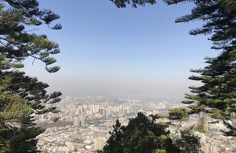 San Cristóbal Hill Santiago Chile Llama Travel