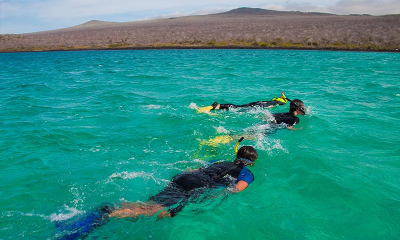 Snorkelling Galapagos Llama Travel