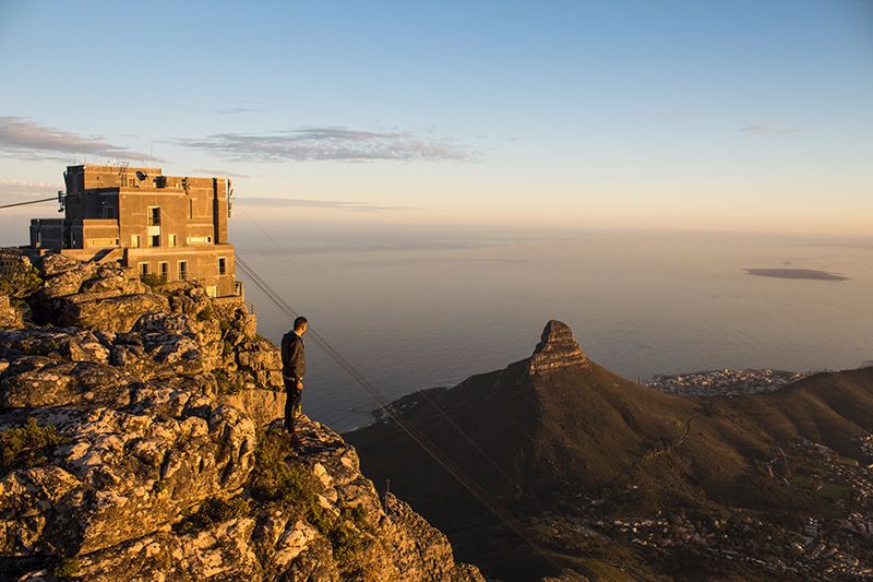 Table Mountain Cape Town South Africa Llama Travel