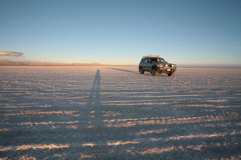 Uyuni Salt Flats Bolivia Llama Travel
