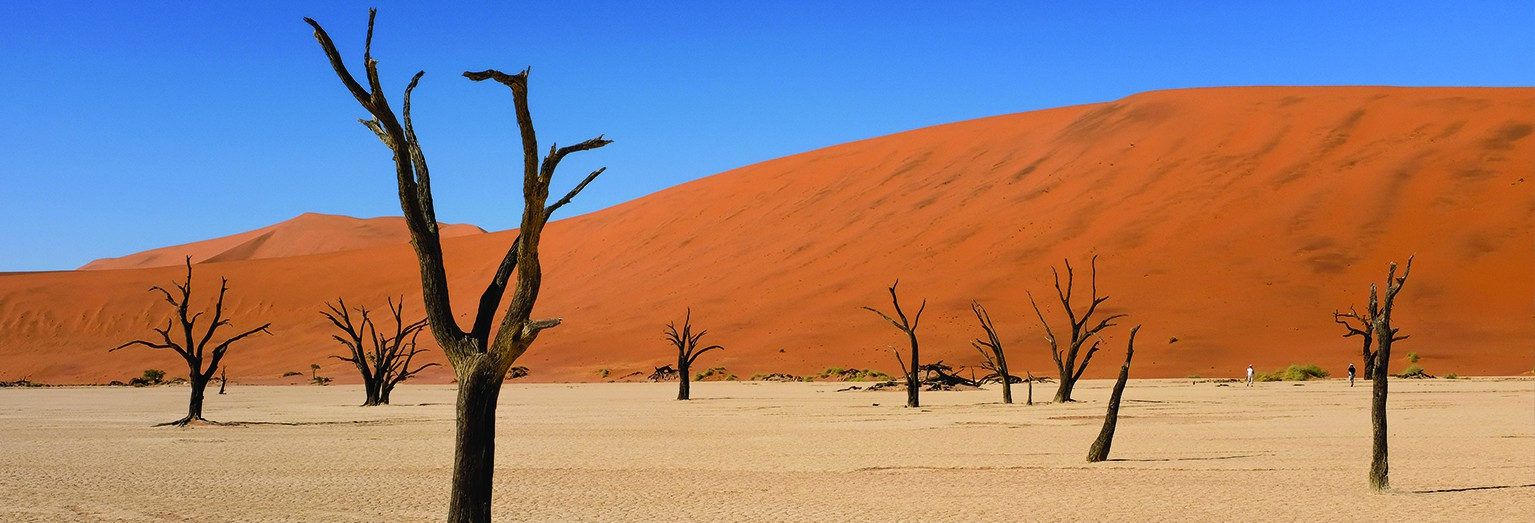 Be inspired by Namibia's landscapes