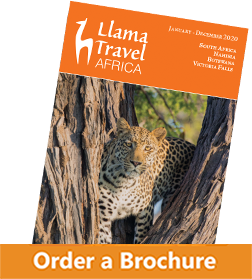 tilted brochure order button 2020 africa
