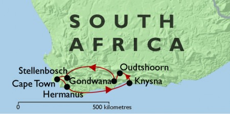 Cape Town & The Garden Route + Gondwana Safari
