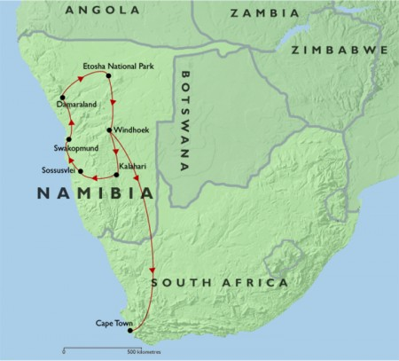 Wildlife and Wilderness of Namibia + Cape Town