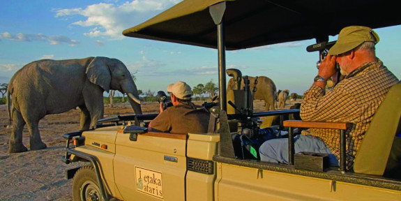 Choosing The Right Safari For You