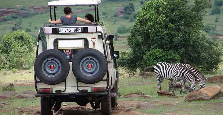 Have a private safari vehicle for no extra cost
