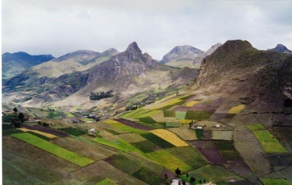 A patchwork landscape in the Ecuadorian Highlands.