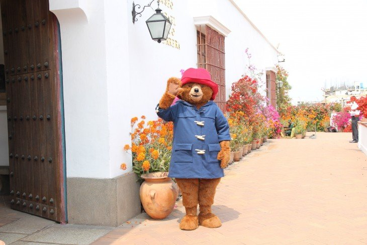 Paddington Bear visiting Museo Larco in Lima, Peru.