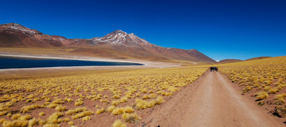 Best Journeys in South America